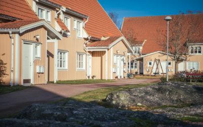 Bild på området Björkhangen